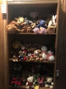 Beanie babies and friends. Contents of bookshelf and box